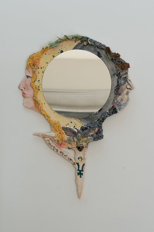 Janus Mirror