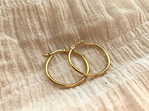 Gouden ringen (klein)