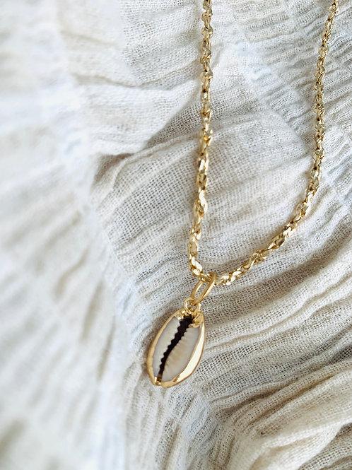 Gouden ketting met kauri schelp