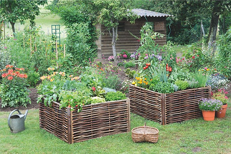 Photo Permaculture.jpg