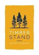 TimberStand_Logo_Yellow.png