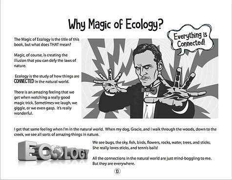 WhyMagicofEcologyscreenSave (1).jpg