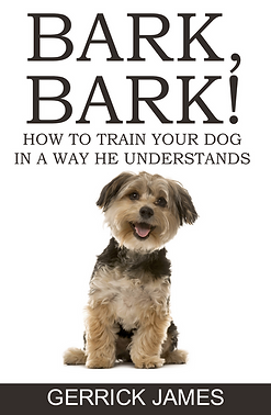 How to Train Your Dog.