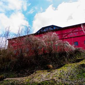 GROUND // Stade du Thillenberg - FC Differdange 03/CS Oberkorn