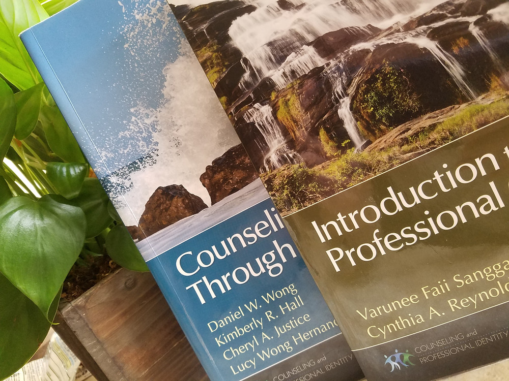 Mental Health Counseling Textbooks