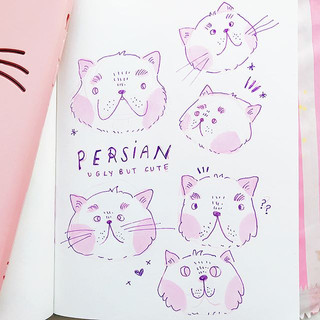 cute animals that I find super adorable 😂🤭🙈 I love how Persians can look so