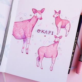 Animal Study! 💖✨😍 Okapis! I've never e