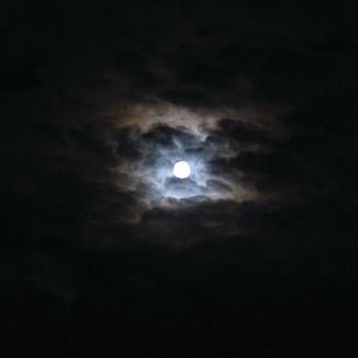 Moon 1 square.jpg