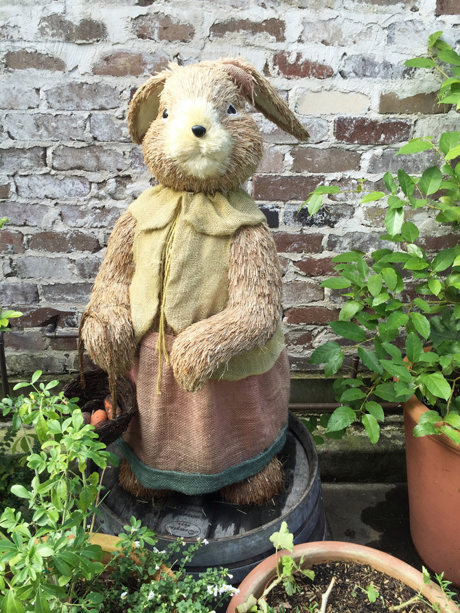 sophie + millie: more bunny finds....