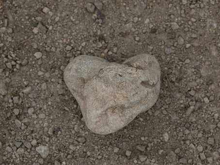 Vom Ruf des Lebens. Wege in dein Herz.