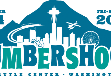 OUR PICKS FOR BUMBERSHOOT 2016!