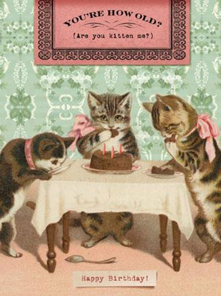 You're How Old? Are you kitten me? Card