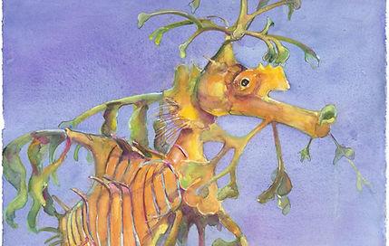 thumbnail_LEAFY SEA DRAGON PORTRAIT.jpg
