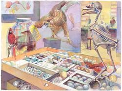 Laboratory Eggs