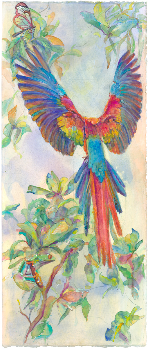 01H SCARLET MACAW STRETCH