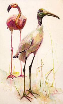 172 Stork and Flamingo
