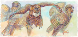 01B THREE OWLS 2