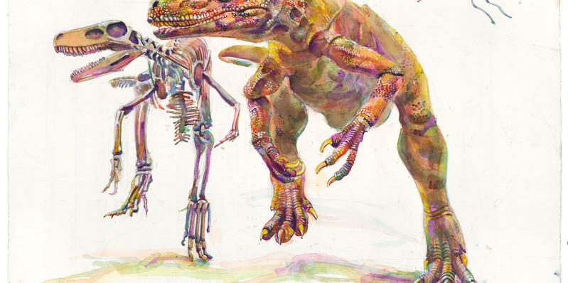 Dinosaur  Skel & Body