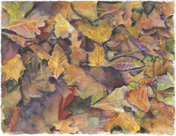 LEAVES by Peggy Macnamara