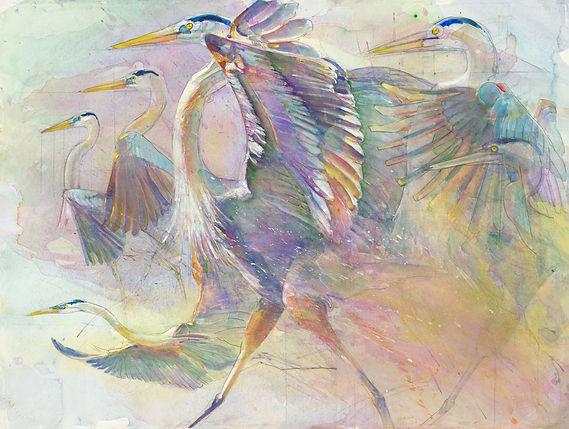 BIRD MOVEMENT 1 2.jpg