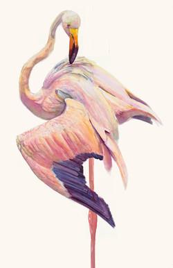 130 flamingo