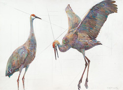 83 Two Cranes Together