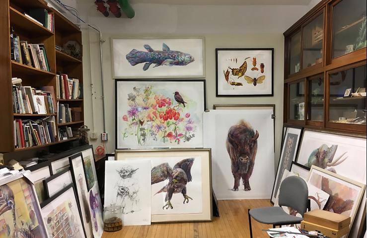 Peggy Macnamara Fieldm Museum office_edi