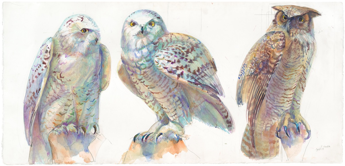 01A THREE OWLS 1