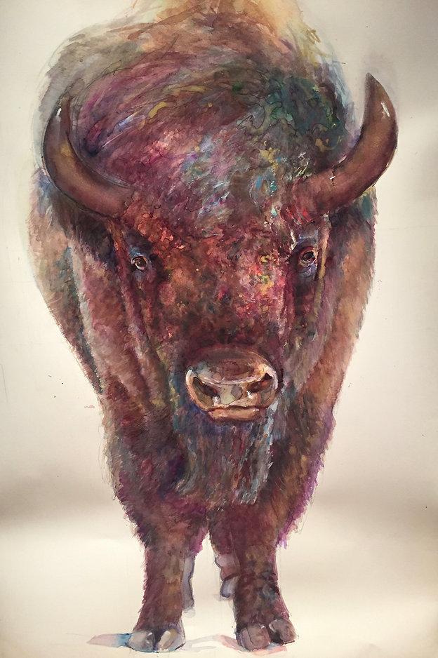 Buffalo Peggy Macnamara.jpg