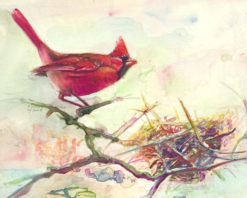 112 cardinal nest II
