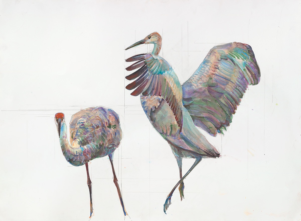 82 Two Cranes meet