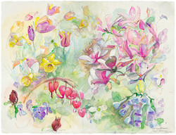 PLANTS SPRING 2014