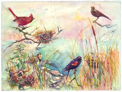 110 cardinal nest