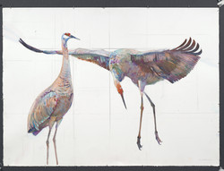 84 Two Cranes Curtsey