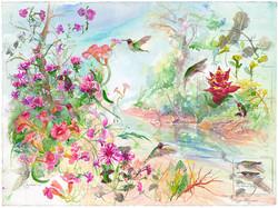 210 Hummingbirds