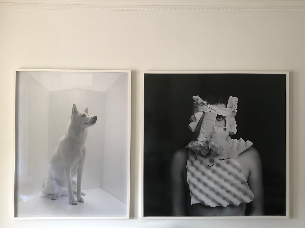 The Art of Buying Art by Shana Diamond Interiors