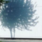 可愛い影をみつけた__#影好き#隅好き#座席はいつも端っこ