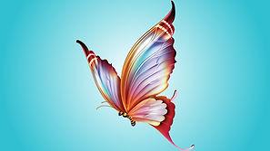 WM Butterfly.jpg