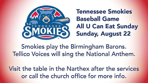 Smokies Baseball Game.jpg