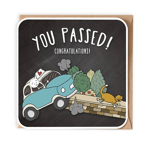 YOU PASSED greeting card - SM21