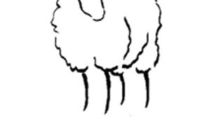 Bordeaux grey katmoget fleece