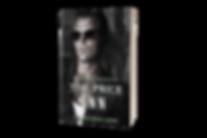 055-5_5x8-Standing-Paperback-Book-Mockup