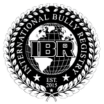 IBR-logo-02.png