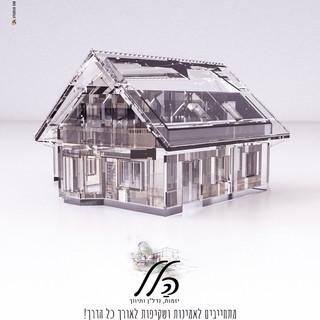 בית שקוף.20516.jpg