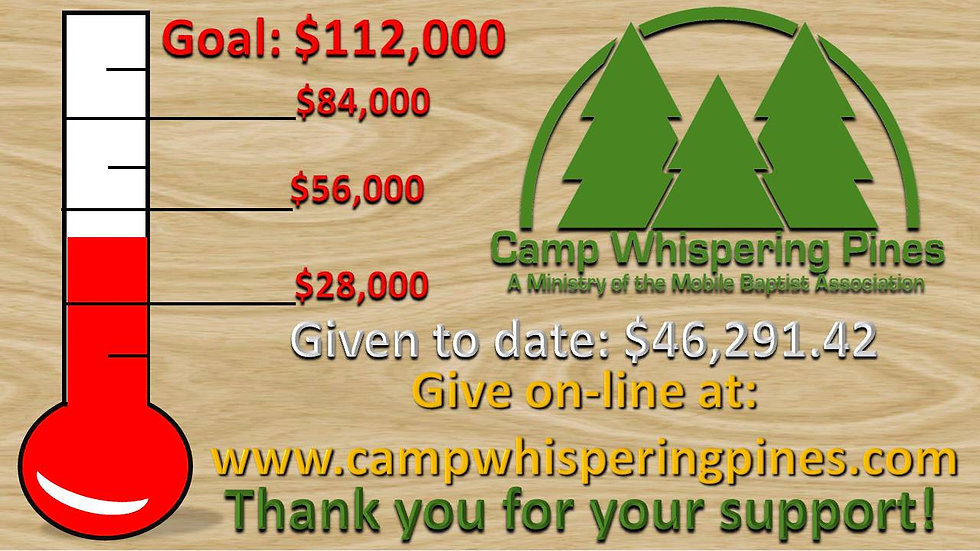 Camp Relief Thermometer slide (editable)