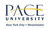 Pace University College Fair