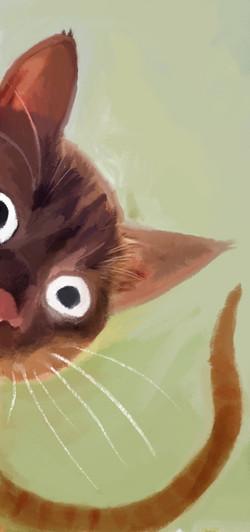 Cat_Corner_Door 2