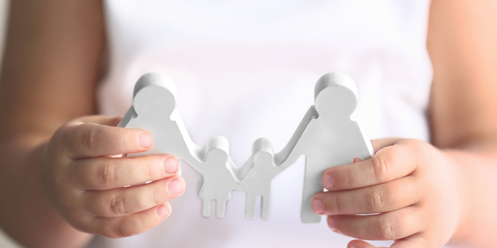 Working with Families Using Evidence-Informed Principles: An Overview