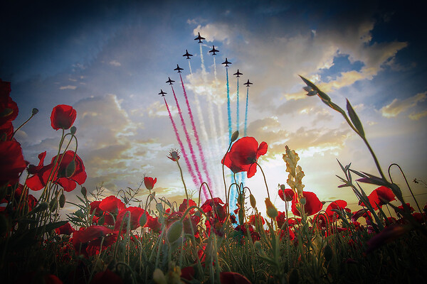 Red Arrows Poppy Fly Past