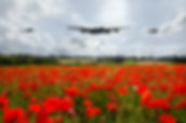 lancaster bomber poppy field